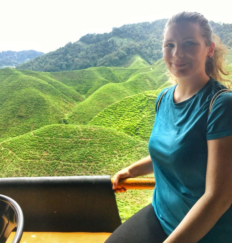 An diese Aussicht auf die Teeplantagen werde ich mich noch lange erinnern.