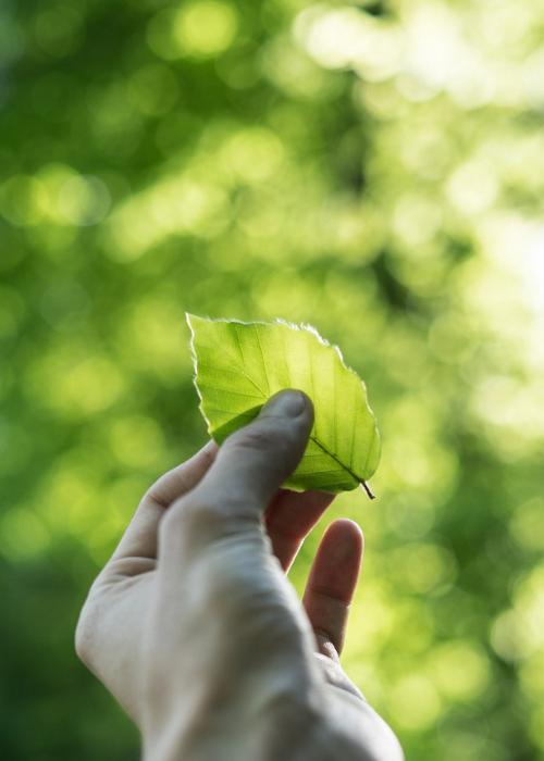 Nachhaltig reisen und leben trotz und mit Zöliakie