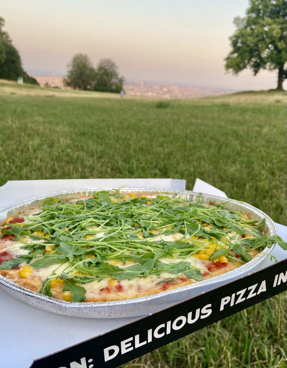 Glutenfreie Pizza mit Blick über Wien